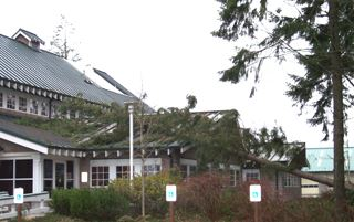 A tree laying on the roof of the District headquarters after a windstorm
